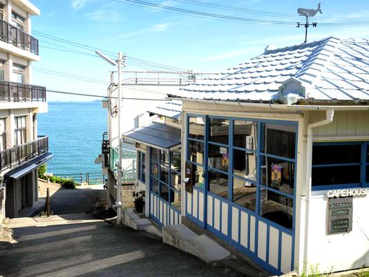 保護猫カフェ「海ねこビーチハウス」をオープンしたい!